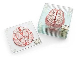 Brain Coasters for Gifting to Daughter