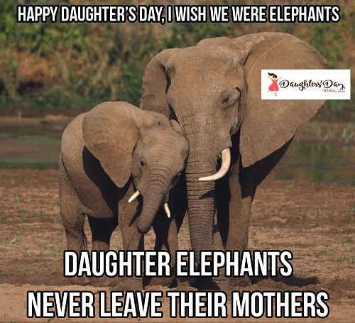 Happy Daughters Day Memes